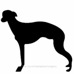 Greyhound image for house sign