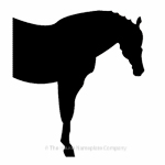 Half horse image