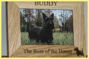 Personalised pet photo frames