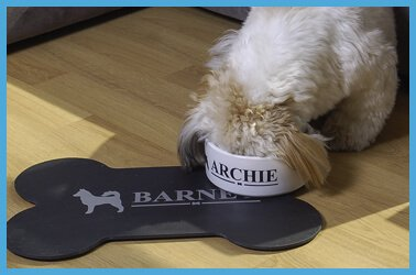 Personalised pet bowls, jars and feeding mats