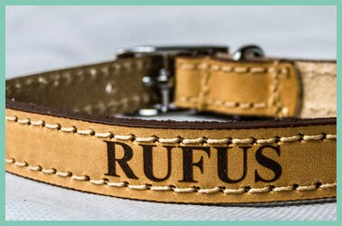 Personalised dog collars and leads