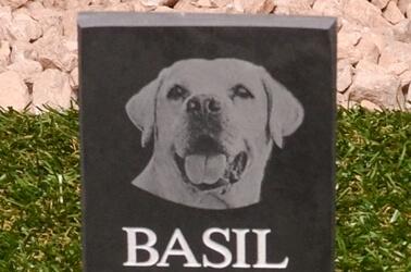 Pet photo memorial