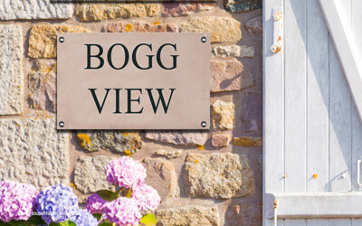 Bogg View