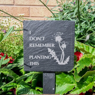 How to clean your drive - Slate Plant Marker Weeds