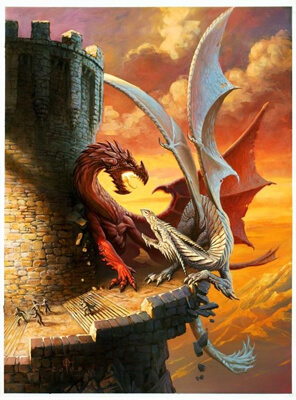 fighting red and white dragon